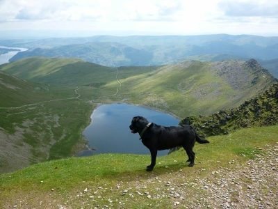 Morgan on the summit of Helvellyn