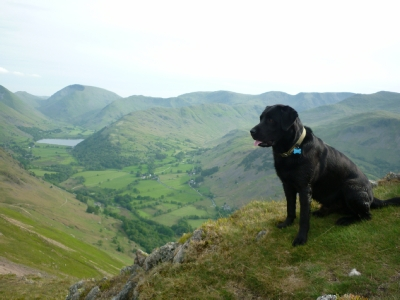 Morgan above the dale towards Brotherswater